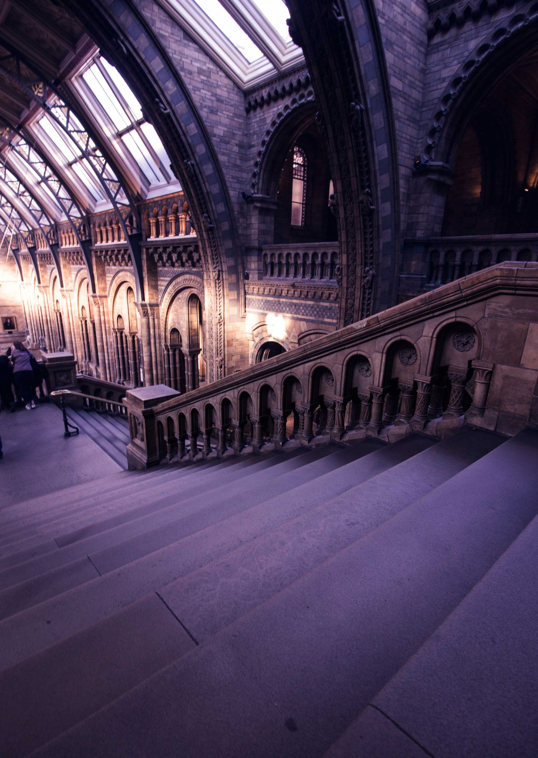 Natural History Museum Stairs